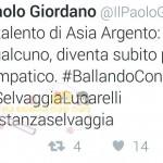 selvaggialucarelli3