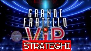 gfvip strategia
