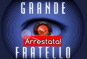 Aida Nizar arrestata