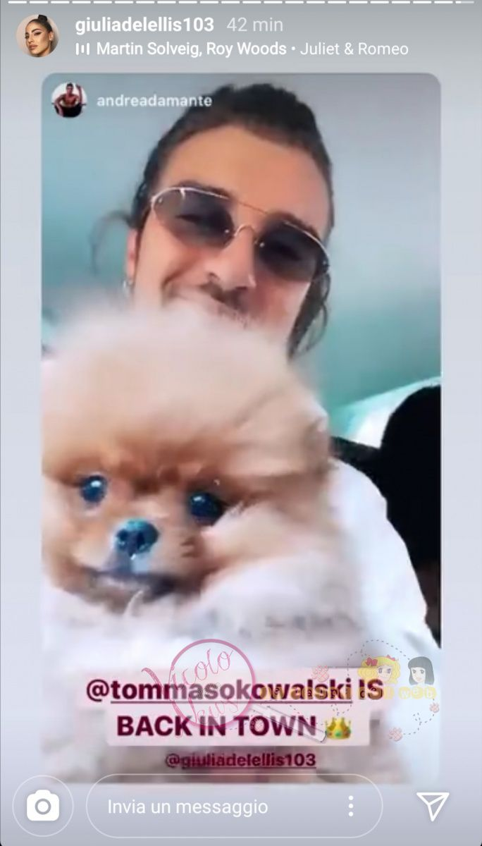 Andrea Damante cane 1