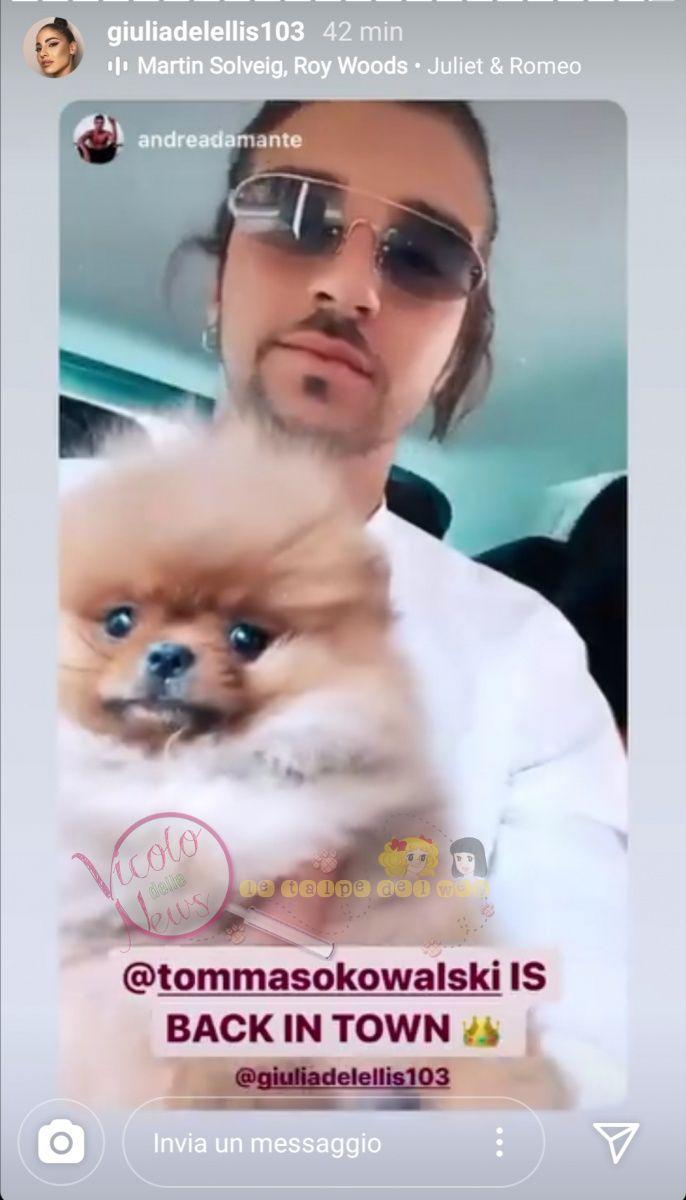 Andrea Damante cane